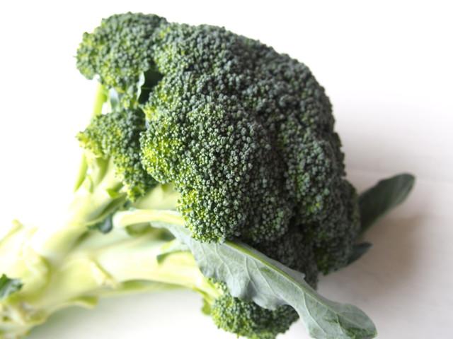 無肥料・自然栽培ブロッコリー