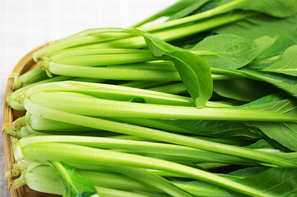 無肥料・自然栽培小松菜
