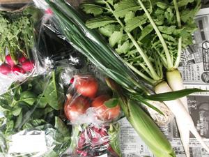 2012年10月14日の元ちゃんの無農薬野菜セット