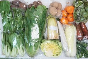 3月2日の無施肥無農薬栽培と自然栽培の定期宅配Lセット/大根、ジャガイモ(出島)、サツマイモ、里芋、ニンジン、温州みかん、白菜、キャベツ、ロメインレタス、サニーレタス、水菜、青梗菜(チンゲン菜)、壬生菜、茎ブロッコリー、エシャロット