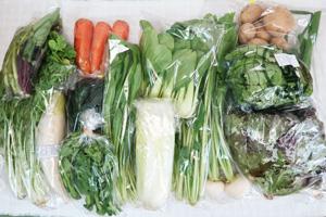 3月6日の無施肥無農薬栽培と自然栽培の定期宅配Lセット/大根、ジャガイモ(出島)、ニンジン、白菜、小カブ、レタス、サニーレタス、水菜、青梗菜(チンゲン菜)、ネギ、壬生菜、小松菜、菜の花、紅菜苔、黒キャベツ