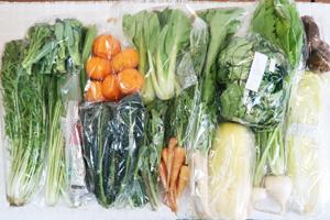 3月9日の無施肥無農薬栽培と自然栽培の定期宅配Lセット/里芋、間引きニンジン、温州みかん、白菜、レタス、大根葉(中抜き葉)、水菜、小カブ、青梗菜(チンゲン菜)、壬生菜、茎ブロッコリー、黒キャベツ、エシャロット、菜の花、大根
