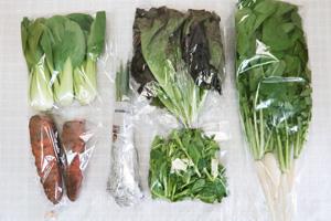 3月9日の無施肥無農薬栽培と自然栽培の定期宅配Sセット/ニンジン、サニーレタス、大根葉(中抜き葉)、青梗菜(チンゲン菜)、エシャロット、菜の花