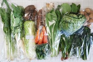 3月13日の無施肥無農薬栽培と自然栽培の定期宅配Lセット/ジャガイモ(出島)、サツマイモ(紅はるか)、里芋、ニンジン、白菜、レタス、水菜、青梗菜(チンゲン菜)、ネギ、大根葉(中抜き葉)、小松菜、ほうれん草、黒キャベツ、レンコン、茎ブロッコリー