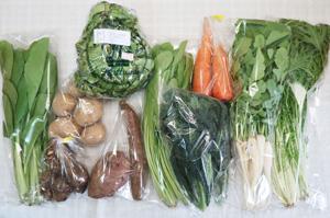 3月13日の無施肥無農薬栽培と自然栽培の定期宅配Mセット/ジャガイモ(出島)、サツマイモ(紅はるか)、里芋、ニンジン、レタス、水菜、大根葉(中抜き葉)、壬生菜、小松菜、黒キャベツ