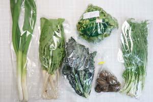 3月16日の無施肥無農薬栽培と自然栽培の定期宅配Sセット/里芋、水菜、ネギ、大根葉(中抜き葉)、レタス、黒キャベツ