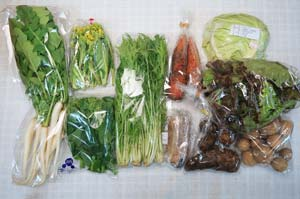 3月20日の無施肥無農薬栽培と自然栽培の定期宅配Mセット/ニンジン、ジャガイモ(出島)、里芋、キャベツ、サニーレタス、大根葉(中抜き葉)、レンコン、水菜、菜の花、菜の花