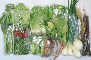 5月1日の無施肥無農薬栽培と自然栽培の定期宅配Lセット/春堀りゴボウ、ジャガイモ(北あかり)、葉玉ねぎ、ラディッシュ、えんどう豆、スナップエンドウ、絹さや、アスパラ、ニンニクの芽、ほうれん草、水菜、小松菜、青梗菜(チンゲン菜)、菊菜、山蕗