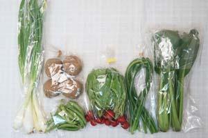 5月1日の無施肥無農薬栽培と自然栽培の定期宅配Sセット/ジャガイモ(北あかり)、葉玉ねぎ、スナップエンドウ、ラディッシュ、ニンニクの芽、小松菜