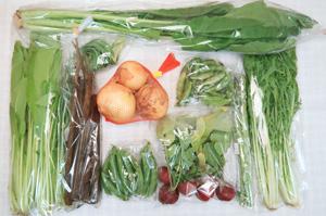 5月4日の無施肥無農薬栽培と自然栽培の定期宅配Mセット/新玉ねぎ、春堀りゴボウ、えんどう豆、スナップエンドウ、ニンニクの芽、アスパラ、ラディッシュ、水菜、壬生菜、野沢菜