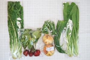 5月4日の無施肥無農薬栽培と自然栽培の定期宅配Sセット/新玉ねぎ、スナップエンドウ、ニンニクの芽、ラディッシュ、水菜、壬生菜
