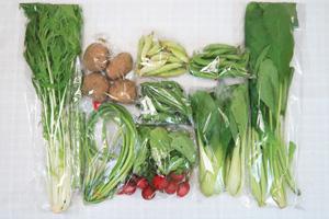 5月8日の無施肥無農薬栽培と自然栽培の定期宅配Mセット/ジャガイモ(北あかり)、ラディッシュ、赤空豆、スナップエンドウ、えんどう豆、アスパラ、ニンニクの芽、青梗菜(チンゲン菜)、水菜、小松菜