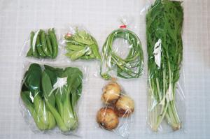 5月8日の無施肥無農薬栽培と自然栽培の定期宅配Sセット/ジャガイモ(北あかり)、スナップエンドウ、絹さや、ニンニクの芽、青梗菜(チンゲン菜)、水菜