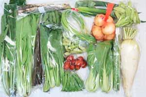 5月11日の無施肥無農薬栽培と自然栽培の定期宅配Lセット/大根、新玉ねぎ、春堀りゴボウ、長ネギ、赤空豆、えんどう豆、スナップエンドウ、絹さや、ニンニクの芽、アスパラ、小松菜、野沢菜、壬生菜、青梗菜(チンゲン菜)、ミニトマト