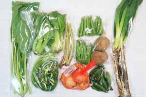 5月11日の無施肥無農薬栽培と自然栽培の定期宅配Mセット/新玉ねぎ、ジャガイモ(北あかり)、長ネギ、赤空豆、スナップエンドウ、絹さや、ニンニクの芽、小松菜、青梗菜(チンゲン菜)、山蕗