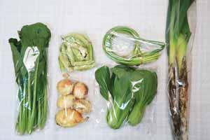 5月11日の無施肥無農薬栽培と自然栽培の定期宅配Sセット/新玉ねぎ、長ネギ、えんどう豆、ニンニクの芽、小松菜、青梗菜(チンゲン菜)