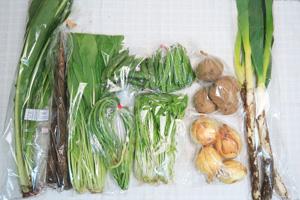 5月15日の無施肥無農薬栽培と自然栽培の定期宅配Mセット/新玉ねぎ、長ネギ、春堀りゴボウ、ジャガイモ(北あかり)、赤空豆、絹さや、ニンニクの芽、壬生菜、野沢菜、水菜