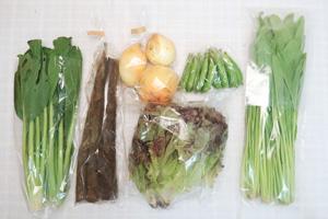 5月22日の無施肥無農薬栽培と自然栽培の定期宅配Sセット/春堀りゴボウ、新玉ねぎ、スナップエンドウ、壬生菜、小松菜、サニーレタス
