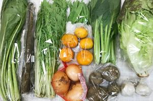 5月25日の無施肥無農薬栽培と自然栽培の定期宅配Mセット/春堀りゴボウ、ジャガイモ(北あかり)、新玉ねぎ、絹さや、水菜、野沢菜、小松菜、サニーレタス、ニンニク、カラマンダリン