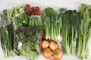 5月29日の無施肥無農薬栽培と自然栽培の定期宅配Mセット/新玉ねぎ、青梗菜(チンゲン菜)、壬生菜、小松菜、ニラ、サニーレタス、スナップエンドウ、絹さや、えんどう豆、ミニトマト