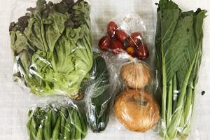5月29日の無施肥無農薬栽培と自然栽培の定期宅配Sセット/新玉ねぎ、ズッキーニ、小松菜、サニーレタス、スナップエンドウ、ミニトマト