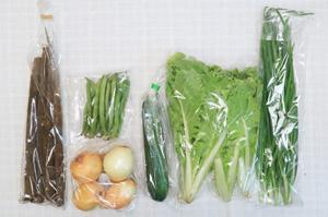 6月5日の無施肥無農薬栽培と自然栽培の定期宅配Sセット/春堀りゴボウ、玉ねぎ、インゲン、ズッキーニ、山東菜、ニラ