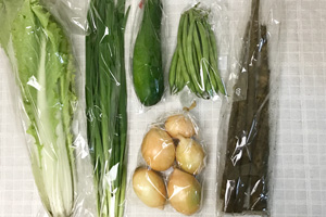 6月8日の無施肥無農薬栽培と自然栽培の定期宅配Sセット/春堀りゴボウ、玉ねぎ、ズッキーニ、インゲン、山東菜、ニラ