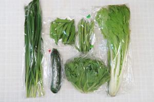 6月12日の無施肥無農薬栽培と自然栽培の定期宅配Sセット/ズッキーニ、絹さや、インゲン、リーフレタス、ニラ、山東菜