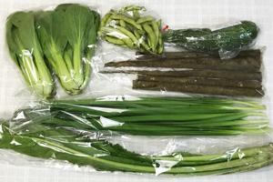 6月15日の無施肥無農薬栽培と自然栽培の定期宅配Sセット/春堀りゴボウ、ズッキーニ、黒豆の枝豆、野沢菜、青梗菜(チンゲン菜)、ニラ