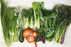 6月19日の無施肥無農薬栽培と自然栽培の野菜の定期宅配セット