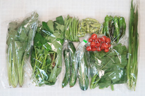 7月3日の無施肥無農薬栽培と自然栽培の定期宅配Mセット/キュウリ、ズッキーニ、万願寺とうがらし、インゲン、枝豆、小松菜、ツルムラサキ、エンサイ(空心菜)、ニラ、ミニトマト