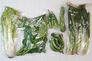 7月13日の無施肥無農薬栽培と自然栽培の定期宅配Sセット/ズッキーニ、万願寺とうがらし、オクラ、山東菜、小松菜、エンサイ(空心菜)