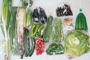 7月17日の無施肥無農薬栽培と自然栽培の定期宅配Lセット/大根、茄子、キュウリ、ズッキーニ、ピーマン、万願寺とうがらし、紫とうがらし、インゲン、リーフレタス、オクラ、オクラ、ニラ、長ネギ、みょうが、ミニトマト