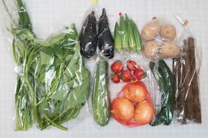 7月20日の無施肥無農薬栽培と自然栽培の野菜の定期宅配セット
