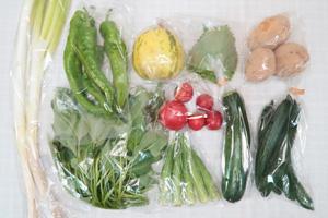 8月14日の無施肥無農薬栽培と自然栽培の野菜の定期宅配セット