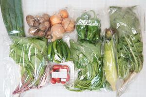 9月21日の無施肥無農薬栽培と自然栽培の野菜の定期宅配セット