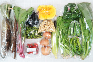 10月9日の無施肥無農薬栽培と自然栽培の定期宅配Lセット/大根、カボチャ(交雑南瓜)、玉ねぎ、ゴボウ、トウモロコシ、茄子、ピーマン、伏見とうがらし、オクラ、枝豆、生落花生、カブ菜、野沢菜、赤かぶ中抜き葉、ミニトマト