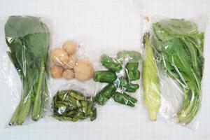 10月9日の無施肥無農薬栽培と自然栽培の定期宅配Sセット/ジャガイモ(北あかり)、トウモロコシ、ピーマン、枝豆、小松菜、野沢菜