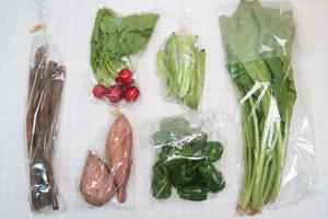 10月12日の無施肥無農薬栽培と自然栽培の定期宅配Sセット/サツマイモ(安納芋)、ゴボウ、ピーマン、シカクマメ、野沢菜、ラディッシュ