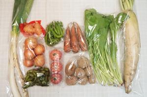 10月19日の無施肥無農薬栽培と自然栽培の定期宅配Mセット/大根、玉ねぎ、ジャガイモ(アンデスレッドメークイン)、ニンジン、長ネギ、枝豆、伏見甘長とうがらし、野沢菜、新生姜、トマト