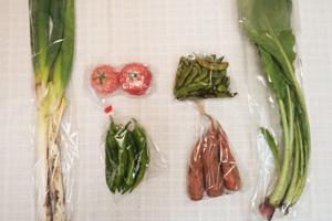 10月19日の無施肥無農薬栽培と自然栽培の定期宅配Sセット/ニンジン、長ネギ、枝豆、万願寺とうがらし、野沢菜、トマト