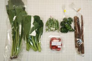10月23日の無施肥無農薬栽培と自然栽培の定期宅配Sセット/ゴボウ、オクラ、ピーマン、野沢菜、ミニトマト、小松菜