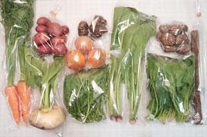 12月4日の無施肥無農薬栽培と自然栽培の定期宅配Mセット/天王寺カブ、玉ねぎ、ジャガイモ(レッドムーン)、里芋、菊芋、葉付きニンジン、ゴボウ、菊菜、野沢菜、ほうれん草