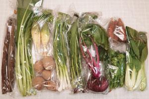 12月7日の無施肥無農薬栽培と自然栽培の定期宅配Mセット/青大根、大野紅カブ、ジャガイモ(北あかり)、ニンジン、ゴボウ、小松菜、青梗菜(チンゲン菜)、野沢菜、菜の花、ニンニクの葉