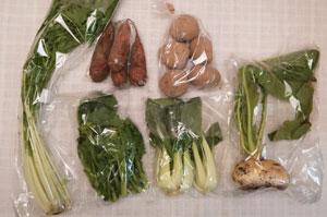 12月7日の無施肥無農薬栽培と自然栽培の定期宅配Sセット/天王寺カブ、ジャガイモ(北あかり)、ニンジン、青梗菜(チンゲン菜)、水菜、菜の花