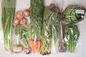12月18日の無施肥無農薬栽培と自然栽培の定期宅配Mセット/天王寺カブ、玉ねぎ、葉付きニンジン、里芋、ゴボウ、レタス、野沢菜、壬生菜、菜の花、ニンニクの葉