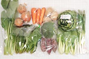 2月19日の無施肥無農薬栽培と自然栽培の野菜の定期宅配セット