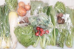 4月5日の無施肥無農薬栽培と自然栽培の定期宅配Lセット/大根、玉ねぎ、里芋、菊芋、ロマネスコ、グリーンリーフ、小松菜、壬生菜、青梗菜(チンゲン菜)、菊菜、葉玉ねぎ、菜の花、絹さや、アスパラ、ミニトマト