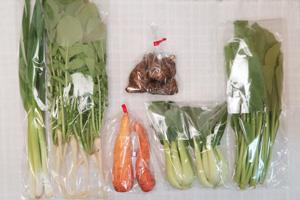4月5日の無施肥無農薬栽培と自然栽培の定期宅配Sセット/大根葉(中抜き葉)、里芋、ニンジン、小松菜、青梗菜(チンゲン菜)、九条細ネギ