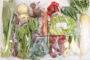 4月9日の無施肥無農薬栽培と自然栽培の定期宅配Lセット/大根、新玉ねぎ、葉玉ねぎ、サツマイモ、里芋、菊芋、ゴボウ、ニンジン、ロマネスコ、リーフレタス、小松菜、ほうれん草、スナップエンドウ、アスパラ、ミニトマト